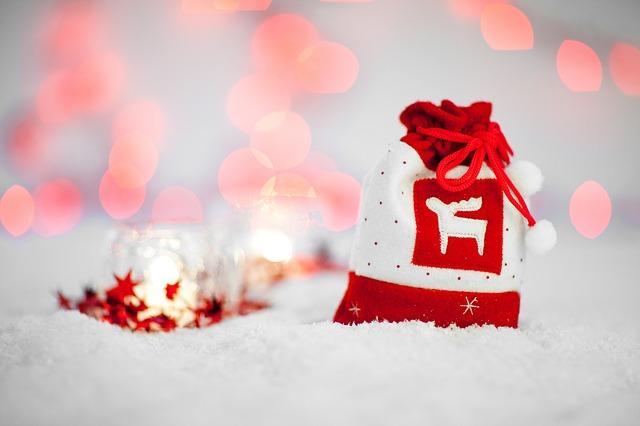 Christmas-bag-raindeer