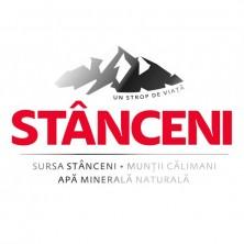 Logo-Stanceni-pozitiv-simulat-RGB-uai-720x459-e1585909826693